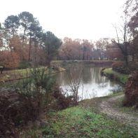 Lac à Thouars
