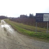 A travers le château Larrivet Haut-Brion