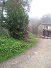 le long de la maison aux moutons