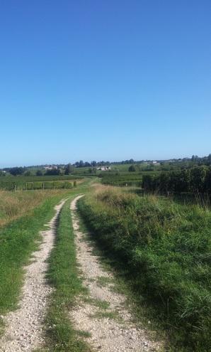 Vers le château Maron